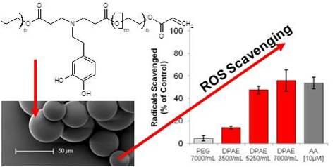 ROS Scavenging Microspheres - antioxidant